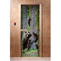 Дверь для бани А064 (стекло)