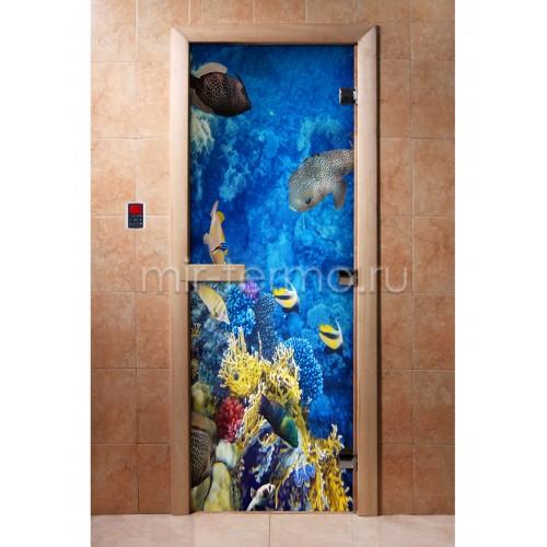 Дверь для бани А068 (стекло)