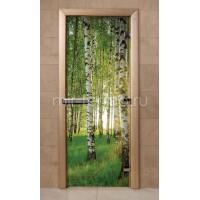 Дверь для бани f241 (стекло)